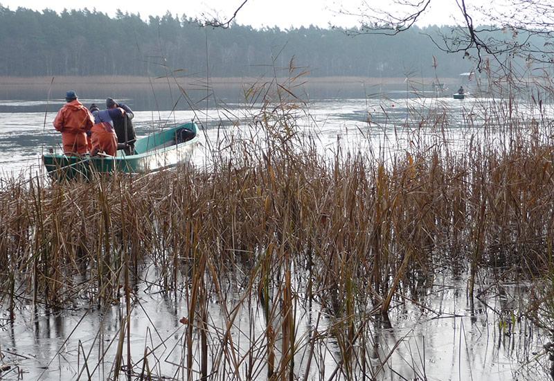 Schweriner Seenfischerei